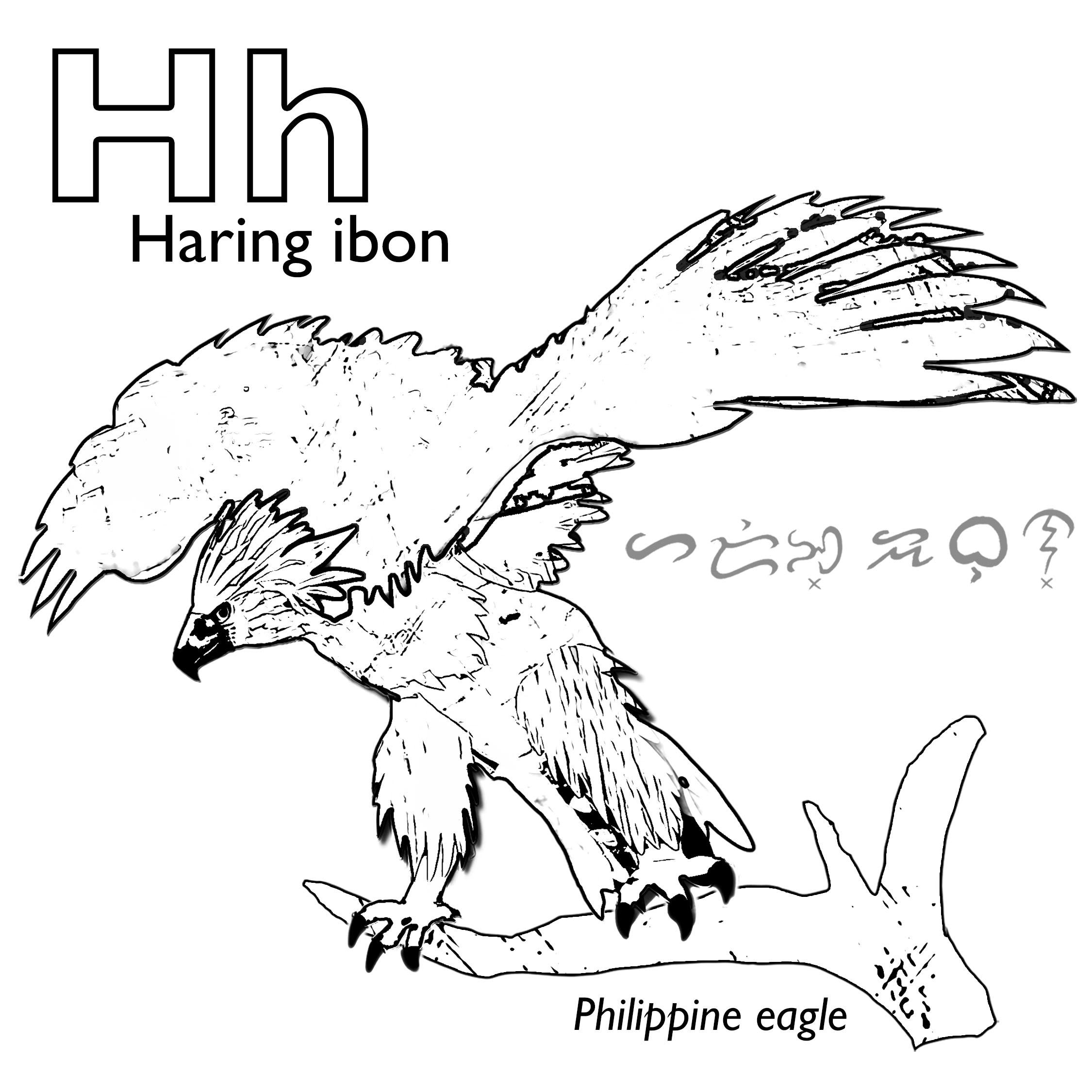 Haring Ibon