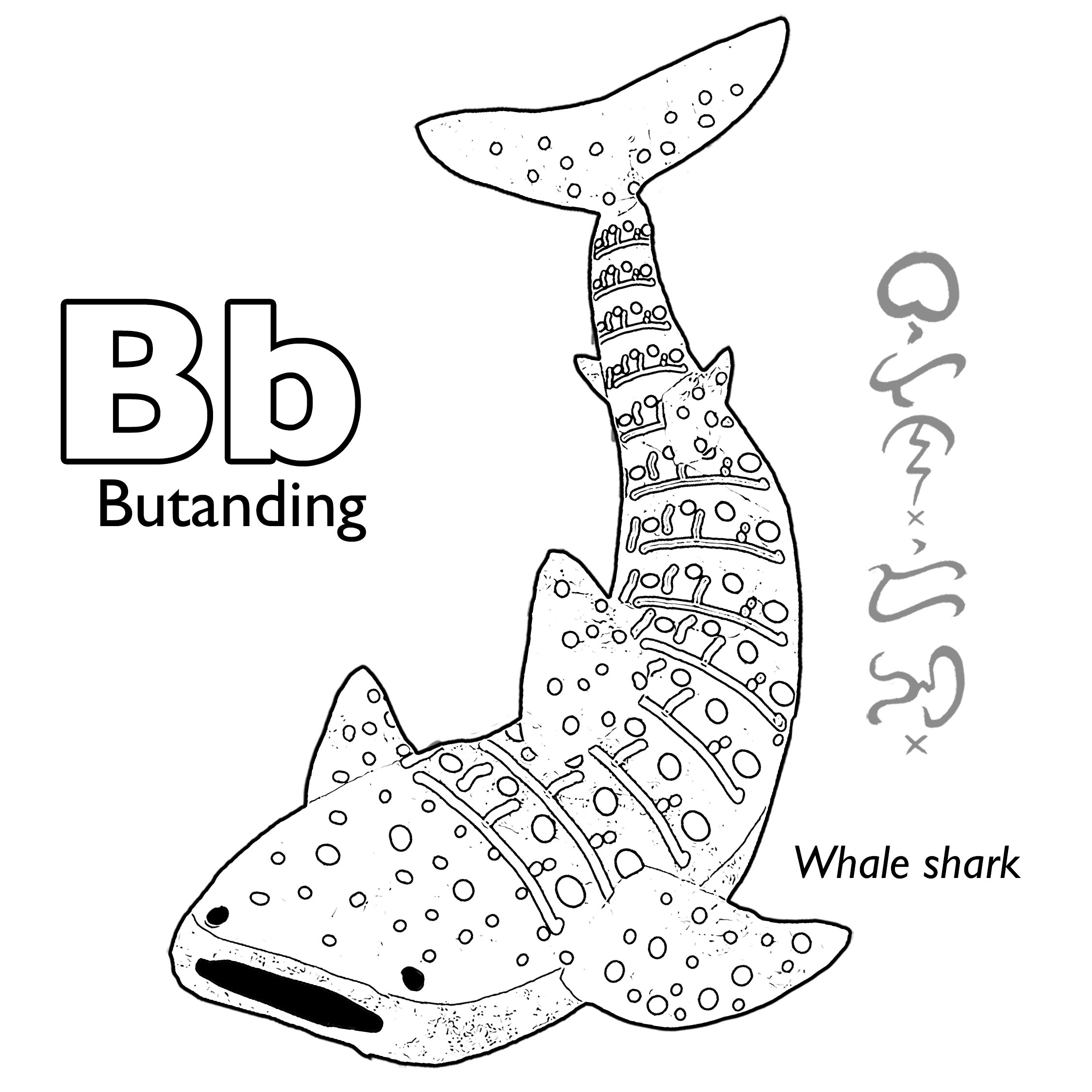 Butanding